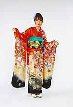 360 赤系 朱赤あげは蝶、花の饗宴古典柄 サムネイル