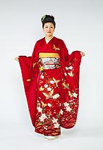 608 赤系 チェリーピンク蝶桜柄 サムネイル